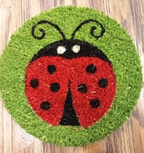 "9"" Ladybug Decorative Coir Insert"