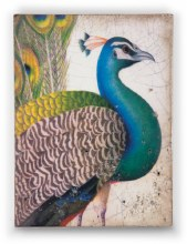 Sid Dickens T287 Fabled Bird Memory Block