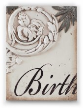 Sid Dickens T306 Birth Memory Block