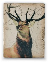 Sid Dickens T349 King of the Forest Memory Block