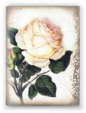 Sid Dickens T374 Sweet Rose Memory Block