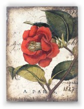 Sid Dickens T404 Red Camellia Memory Block