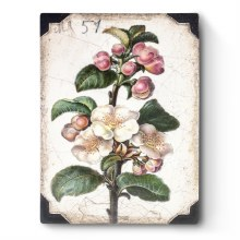 Sid Dickens T462 Apple Blosson Memory Block