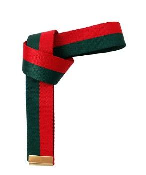 Fashion Ribbon