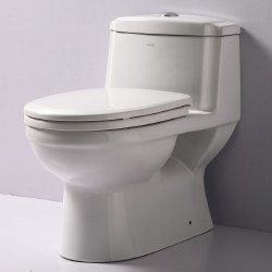 T-222 1-PC Elongated Dual Flush Toilet, in White, TB222
