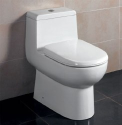 T-351 1-PC Elongated Dual Flush Toilet, in White, TB351