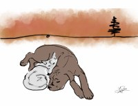 Cuddling Cat & Dog Card