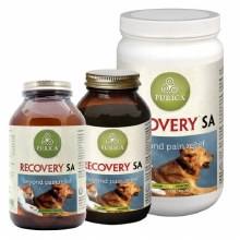 Recovery SA powder 350g