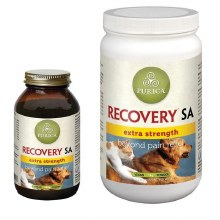 Recovery SA Powder Extra Strength, 150g