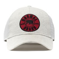 The Normal Brand University Bear Cap