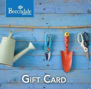 BGC Gift Card Tools €300