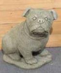 Bulldog 35cm