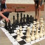 Traditional Garden Games Jumbo Garden Chess