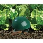 Garland Slug a Snail Trap 2pk