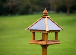 TomC Langdale Bird Table