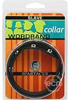 Slave Leather Collar