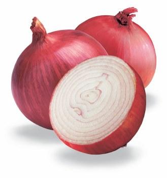 Onion Red/med/jum
