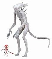 Alien Covenant Neomorph 7in Af
