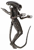 Alien Covenant Xenomorph 7in A