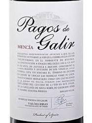 PAGOS DE GALIR MENCIA 750ML