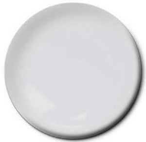 507-C Light Gray RN (SG) Acrylic 14.7ml - 4870