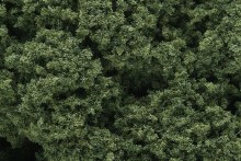 Foliage Clusters Medium Green - FC58