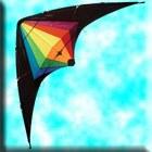 Black Widow Sports Kite
