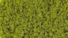 Foam Flock Medium Light Green 200ml - 3386
