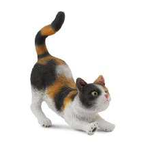 3 Colour House Cat, Stretching - 88491