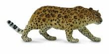 Amur Leopard - 88708