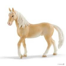 Akhal-Teke Stallion - 13911