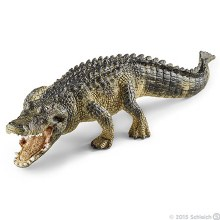 Alligator - 14727
