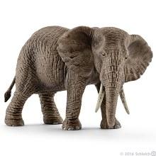 African Elephant Female - 14761
