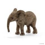 African Elephant Calf - 14763