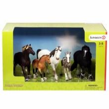 5 Horses Collectors Pack - 72113
