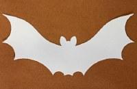 BATS WHITE CARD 12 PER PACK