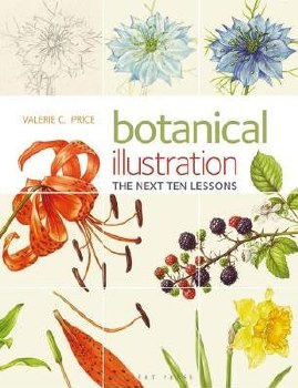 Botanical Illustration next 10