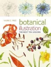 Botanical Illustration next 10