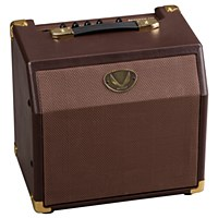 Dean 15w Acoustic Guitar Amplifier
