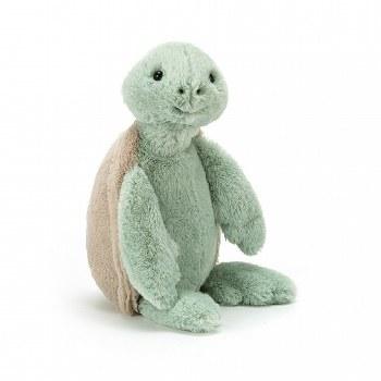 Bashful Turtle Medium