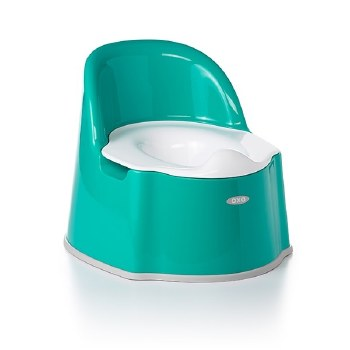 Potty Chair Teal
