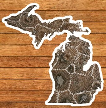Michigan Petoskey Stone