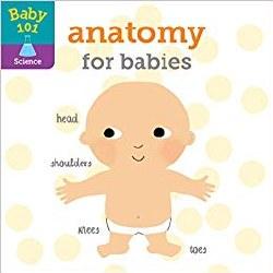 Baby 101: Anatomy