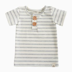 Button Shirt Shipley Stripe 12-18m