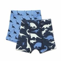 Underwear Shorts Dino 2pk 2T