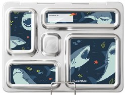 Rover Magnets Sharks