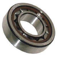Rear Axle Bearing - Outer IRS