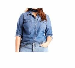 Women's Western Love Blue-Plus Size Shirt