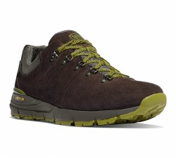 Men's Mountain 600 Low 3""