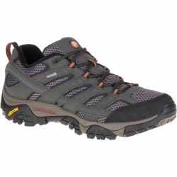 Merrell MOAB 2 GTX Shoe